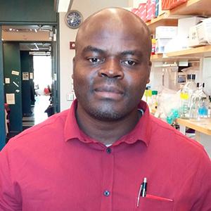 An image of Amidou Samie
